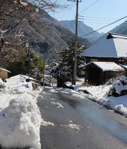 早川町暮らしの情報